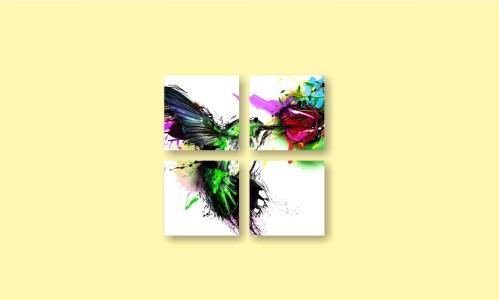 абстракция колибри брызги краски