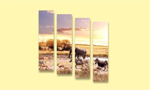 сафари слон зебра саванна