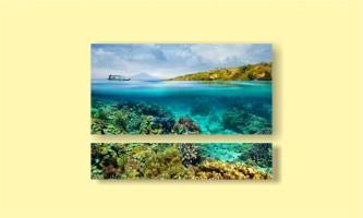 лодка кораллы вода рыбы